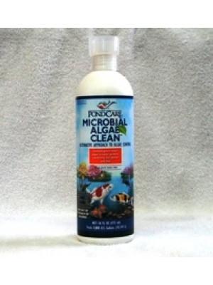 API Pond Care Microbial Algae Clean 16 Oz.