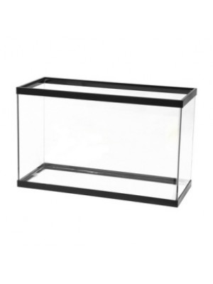 Black Trim Glass 29 Gallon Fish Tank
