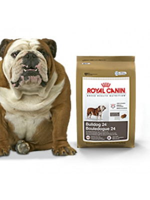Royal Canin Bulldog 24 Dog Food 30 Lb.