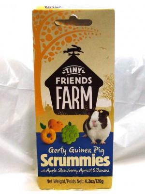 Gerty Guinea Pig Scrummies Treats