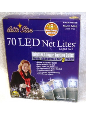 Brite Star 70 LED Net Lites Set White