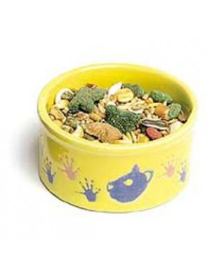 Pet Paw Print Feed Dish For Rodents