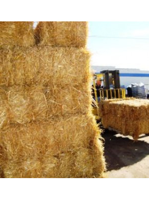 Full Bale Wheat Straw