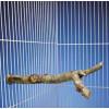 "Penn Plax 18"" Nature Tree Perch"