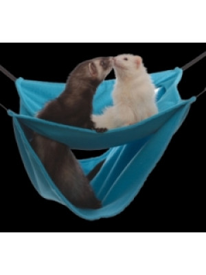 Ferret Deluxe Leisure Lounge