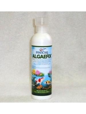 API Pond Care Algaefix 8 Oz.