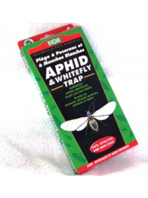 BioCare Aphid & Whitefly Trap