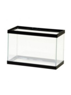 Black Mini Aquarium