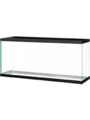 55 Gallon Glass Fish Tank With Black Trim