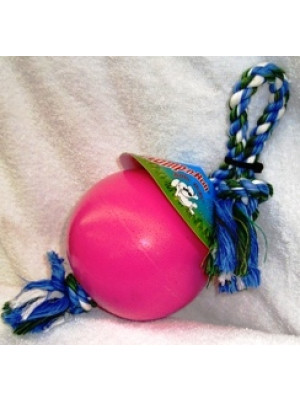 Romp-n-Roll Ball Rope Dog Toy