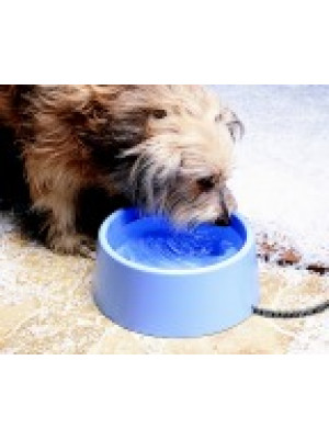 Heated Pet Bowl 5 Qt.