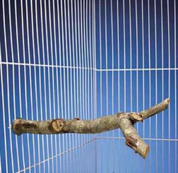 "Penn Plax 10"" Nature Tree Perch"