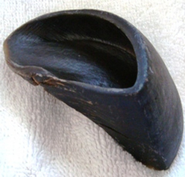 Natural Cow Hooves