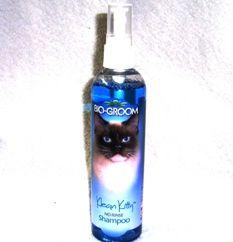Klean Kitty No Rinse Shampoo