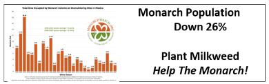 Monarch Down